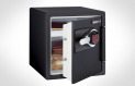 Sentry Safe Fire Safe DS3607
